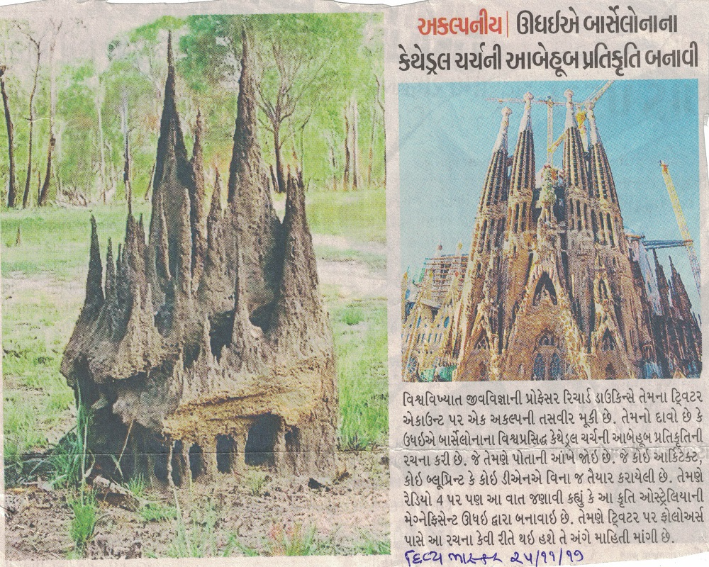 Termite made a Vivid Replica of the Cathedral Chur